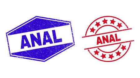 ANAL stamps. Red round and blue flatten hexagonal ANAL seal stamps. Flat vector distress watermarks with ANAL caption inside round and flatten hexagonal shapes. Imprints with unclean surface,