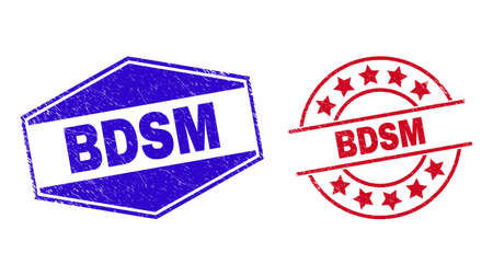 BDSM stamps. Red rounded and blue expanded hexagonal BDSM rubber imprints. Flat vector distress watermarks with BDSM text inside rounded and flattened hexagonal shapes. 일러스트