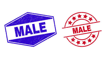 MALE badges. Red rounded and blue flattened hexagonal MALE seal stamps. Flat vector grunge seal stamps with MALE text inside rounded and squeezed hexagon shapes. Watermarks with unclean texture, 일러스트