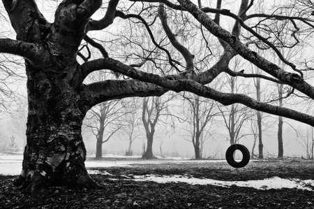 bomen zwart wit: Een oude mode band swing zit ongebruikte, klaar voor de zomer.