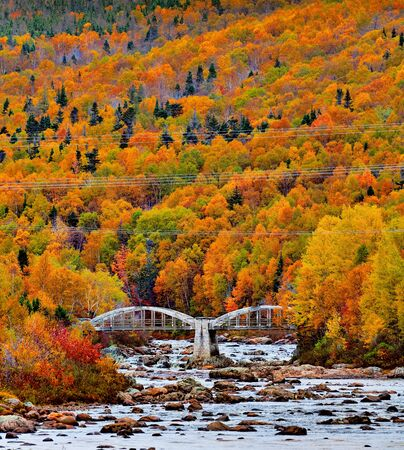 The glorious colours of autumn over Pipers Hole River. Banque d'images - 133051847