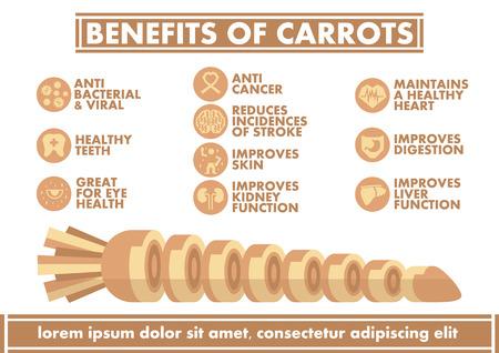 benefit: Benefits of Carrots Infographics - Vector flat design art