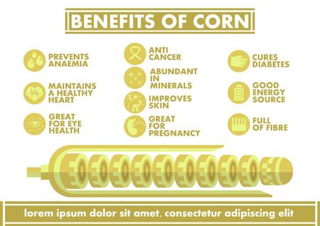 benefit: Benefits of Corn Infographics - Vector flat design art Illustration