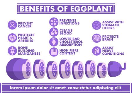 nerve fibers: Benefits of Eggplant Infographics - Vector flat design art
