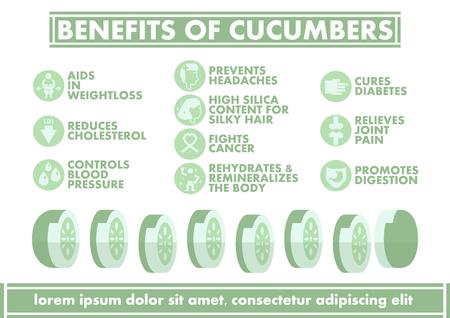 benefit: Benefits of Cucumbers Infographics - Vector flat design art