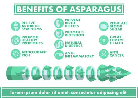 antioxidants: Benefits of Asparagus Infographics - Vector flat design art