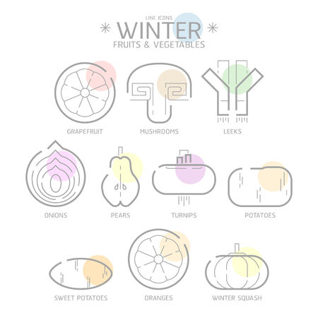 Line Icons Winter Fruits and Vegetables with Colour Spot, Flat Illustration design art