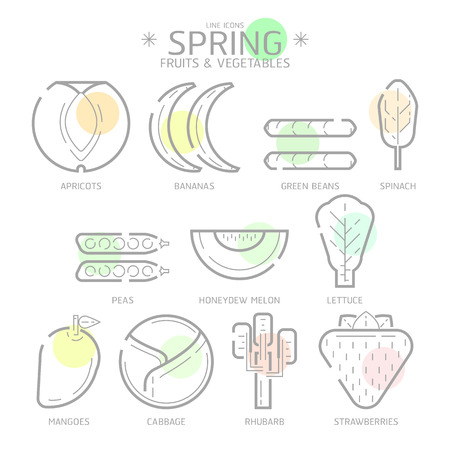 rhubarb: Line Icons Spring Fruits and Vegetables with Colour Spot,Flat Illustration design art