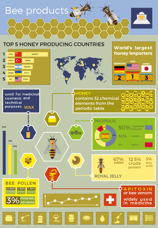 Bee products vector infographics.