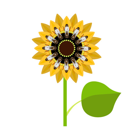 pedicle: Sunflower with bees. Vector illustration isolated on white background