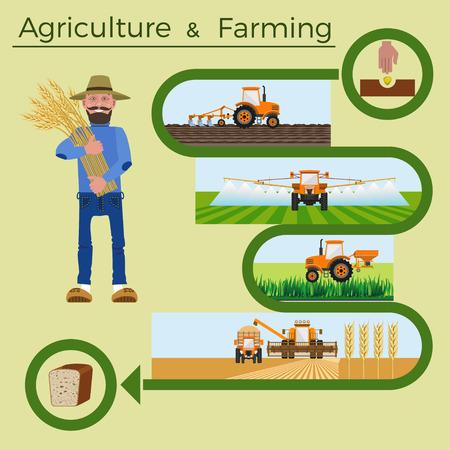 labranza: Conjunto de ilustraciones vectoriales para infografía agrícola Vectores