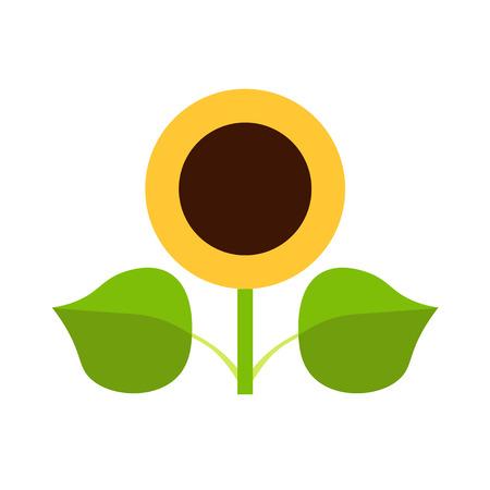 pedicle: Sunflower icon. Vector illustration Illustration