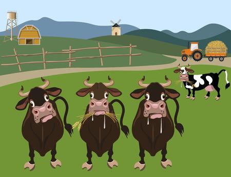 pet breeding: Cattle farm. Vector illustration Illustration