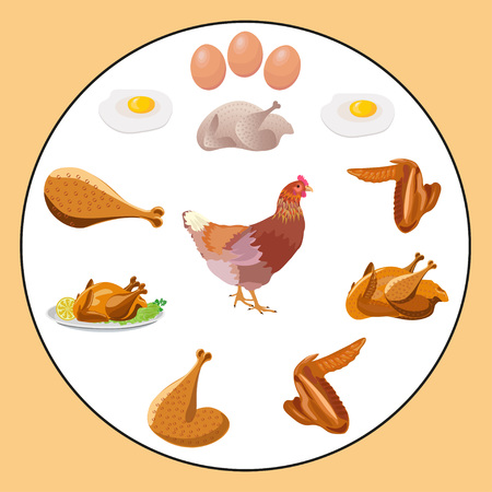 Set of vector chicken products
