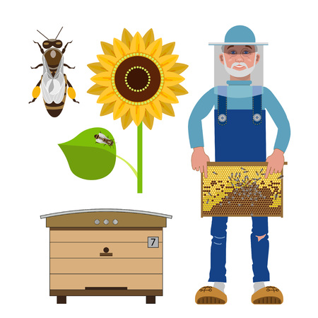 Set of vector illustrations for beekeeping infographics