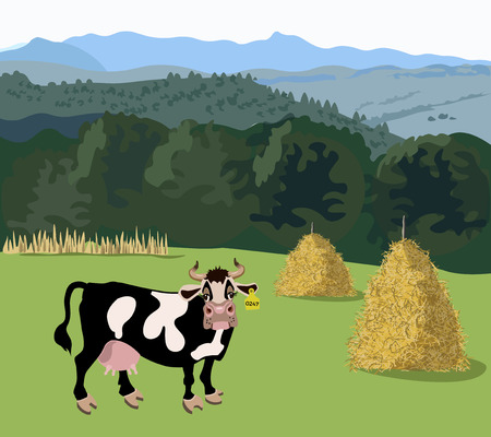 Cow standing in the meadow. Vector illustration