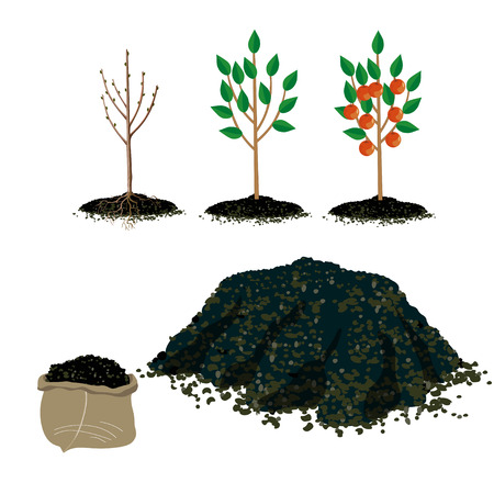 Zestaw ilustracji wektorowych dla ogrodnictwa
