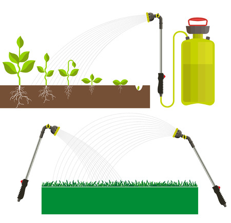 enrich: Stages of plant growth and vector garden sprayer Illustration