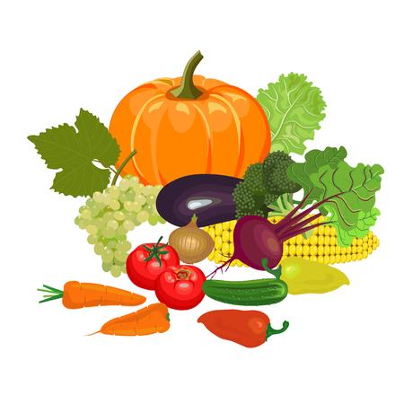 Set of fresh vegetables and fruit. Vector illustration Illustration