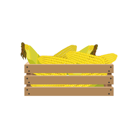 Corn on the cob in a wooden crate. Vector illustration Illustration