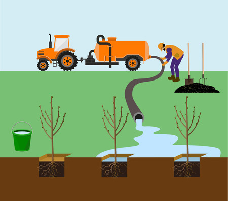 Farmer watering trees. Vector illustration
