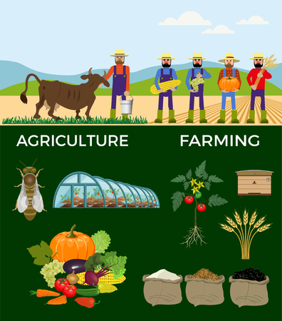 paysage: Vector illustrations for agricultural and farming.