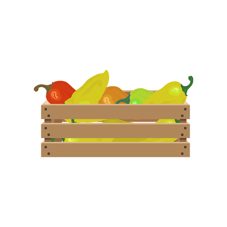 Pepper in wooden crate. Vector illustration