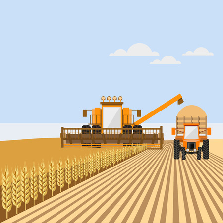 Combine harvester with tractor on the wheat field. Vector illustration