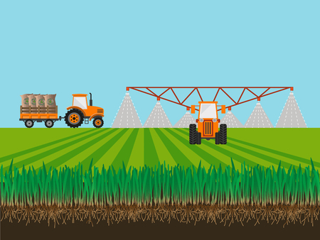 Soil and tractor fertilizing wheat field. Vector illustration Ilustrace