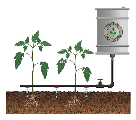 seedlings: Drip irrigation system, vector illustration Illustration