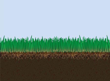 Terrain vectoriel et herbe. Cutaway Banque d'images - 72984669