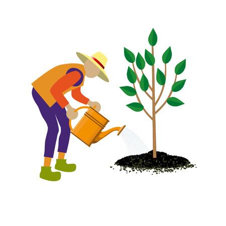 Gardener watering tree. Vector illustration