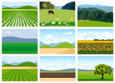 Ensemble de champs agricoles. Illustrations vectorielles. Banque d'images - 77914812
