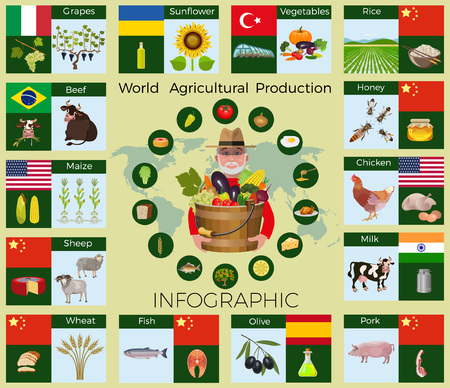 Largest producing countries of agricultural commodities, vector infographic. Illustration