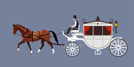 White carriage with bay stallion and coachman