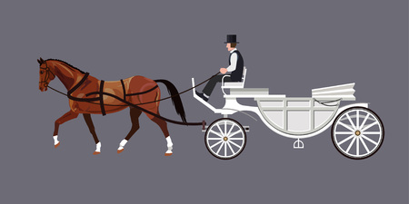 White carriage with bay horse and driver