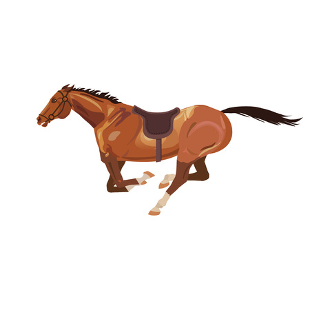 Galloping horse on a white background. Vector illustration