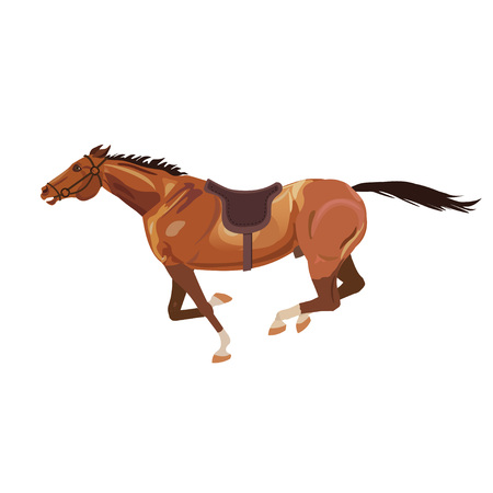 Galloping bay horse. Vector illustration