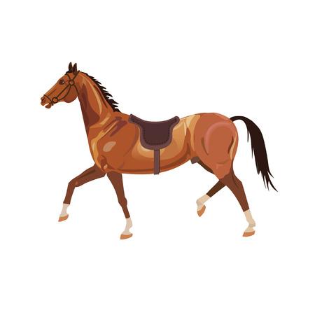 Schöne Bucht Pferd Lauf Trab. Vektor-Illustration