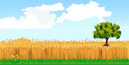 Rural landscape with wheat field and tree. Vector illustration Illustration