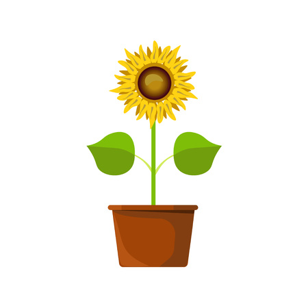Flower in a clay pot Vector illustration
