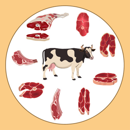 Set of beef meat. Vector illustration