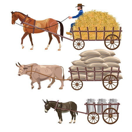 Set of vector vehicles with draft animals: horse, ox and donkey Stock fotó - 82353060