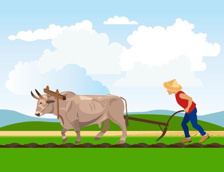 Landwirt pflügen Reisfeld mit Ochsen. Vektor-Illustration Standard-Bild - 82353063