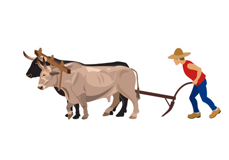 Farmer plowing field with pair oxen. Vector illustration