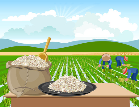 Bag and a plate of rice on a rice field background 免版税图像 - 82353065