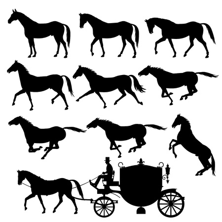 Set of vector silhouettes of horses. Standing, walking, trotting, galloping, rearing horses. Illustration