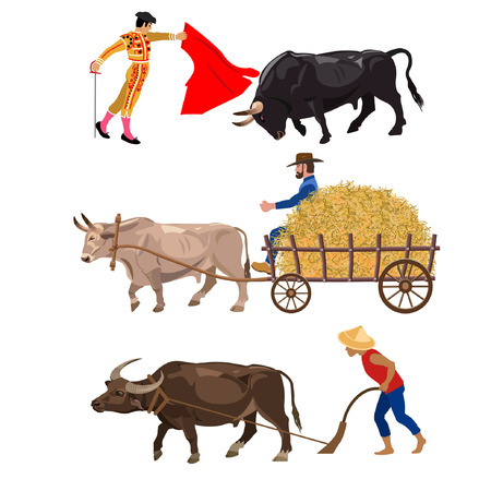 hauling: Set of working bulls. Vector illustration on the white