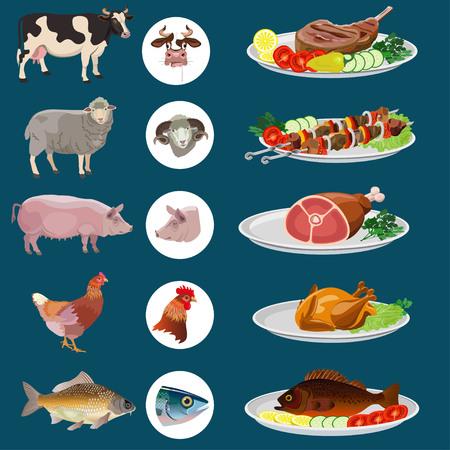 Vaste gerechten: rundvlees, lam, varkensvlees, kip, vis. Vector illustratie.