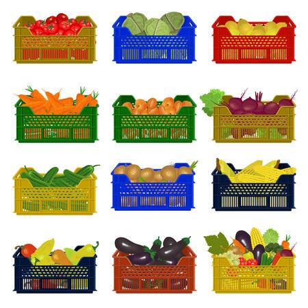 野菜のプラスチック箱。ベクターイラスト